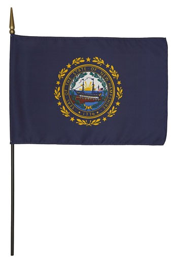 New Hampshire state flag : Stock Photo