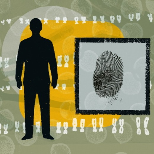 Silhouette of man, fingerprint with chromosome pairs (digital) : Stock Photo