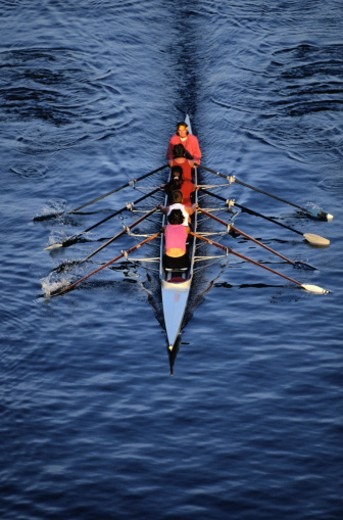Female rowing team, rear view, elevated view : Stock Photo
