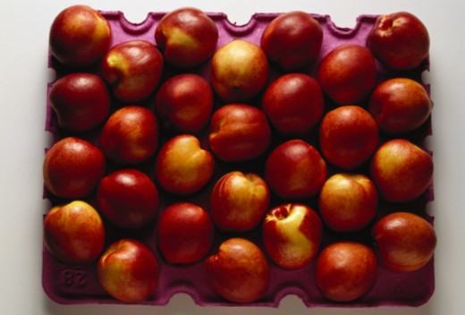 Nectarines in tray : Stock Photo