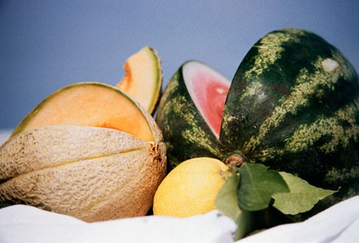 Still Life with Assorted Melons : Stock Photo