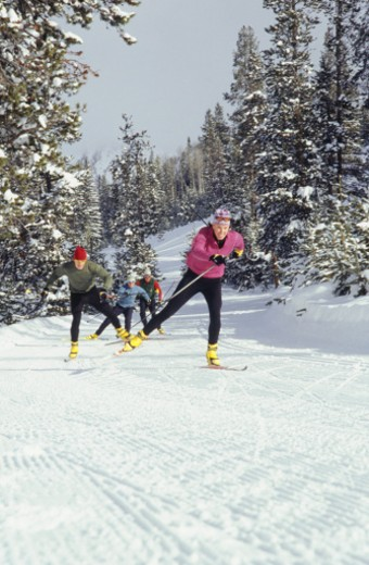 Stock Photo: 1598R-62912 People cross-country skiing in mountains