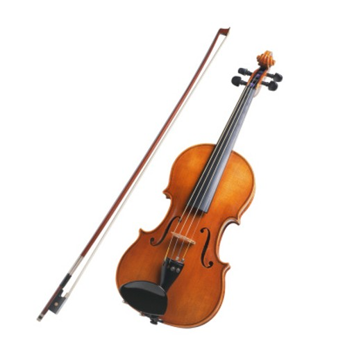 Violin with Bow : Stock Photo