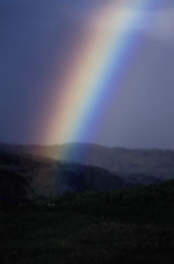 Rainbow in Maui : Stock Photo