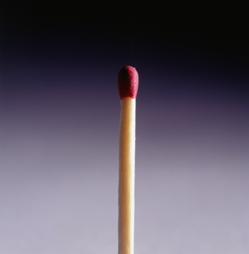 Unlit Match, (Close-up) : Stock Photo