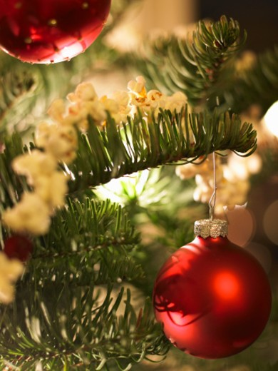 Stock Photo: 1598R-9943989 Christmas tree with red ornaments, close-up