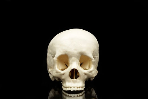 Stock Photo: 1598R-9946079 Human skull without lower jaw on black background