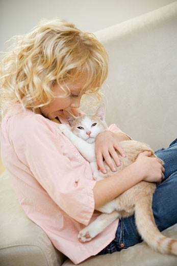 Stock Photo: 1598R-9951298 Girl (6-8) cradling white and ginger cat on sofa