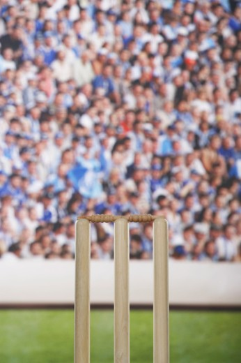 Cricket wicket, close up of stumps and bails : Stock Photo
