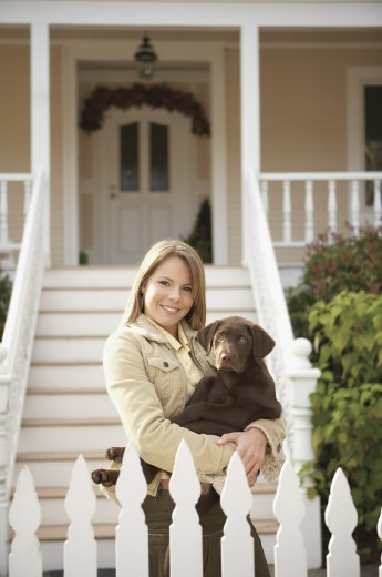 Stock Photo: 1598R-9960469 Teenage girl (14-16) holding chocolate Labrador puppy, portrait