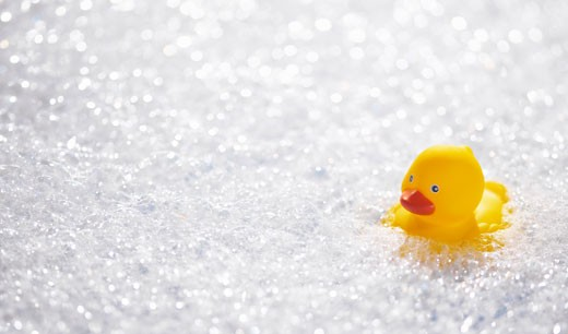 Rubber duck floating in soap suds : Stock Photo