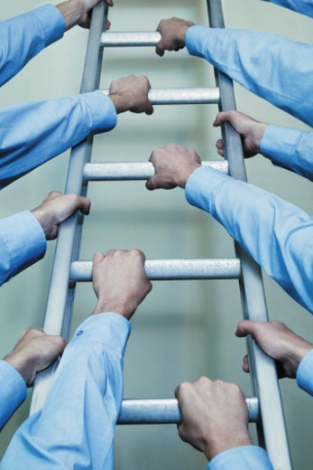 Stock Photo: 1598R-9962420 Businessmen's Arms Climbing a Ladder