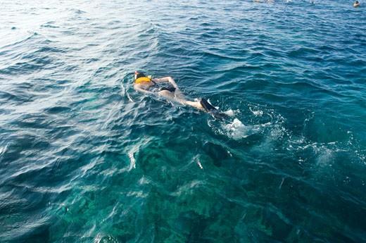 Stock Photo: 1598R-9972972 Woman snorkelling in ocean