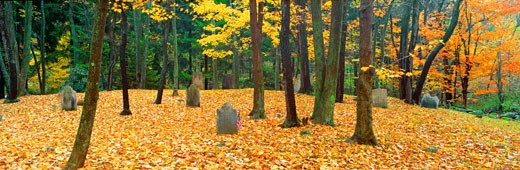 Stock Photo: 1598R-9979668 'Noah Phelps grave in Revolutionary War cemetery in Autumn, Austerlitz, New York'