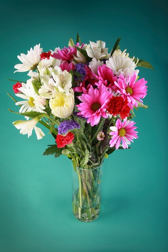 Stock Photo: 1598R-9987180 A variety of beautiful flowers in a vase.
