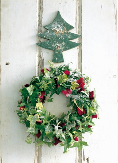 Wreath of green and red hedera with Xmas ornament : Stock Photo