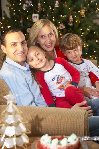 Stock Photo: 1598R-9988691 Family celebrating Christmas