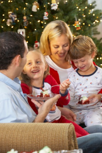Stock Photo: 1598R-9988692 Family celebrating Christmas