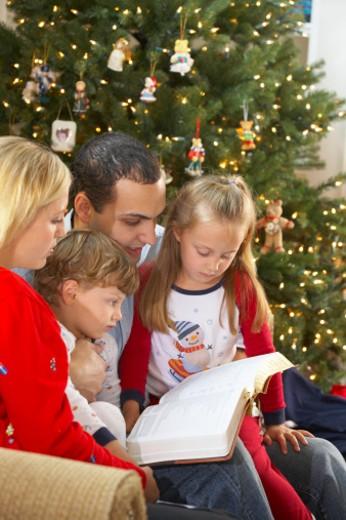 Family celebrating Christmas : Stock Photo