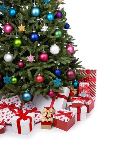 Stock Photo: 1598R-9991824 Christmas Tree