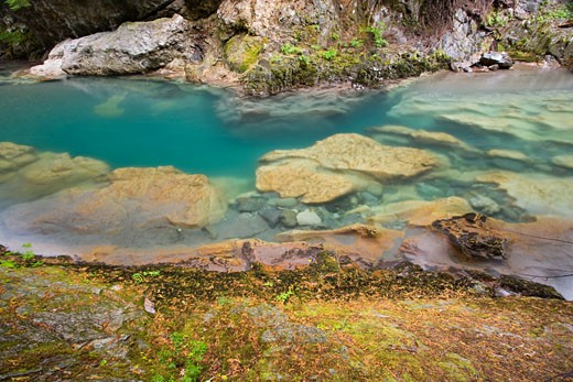 Clear water of Chinook Creek, Mount Rainier National Park : Stock Photo