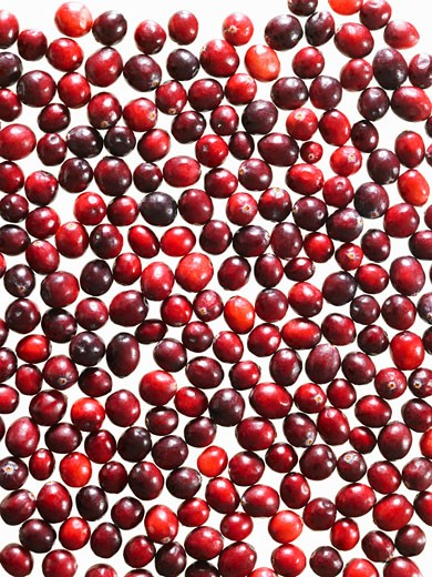 Stock Photo: 1598R-9994878 Fresh Cranberries on White Background