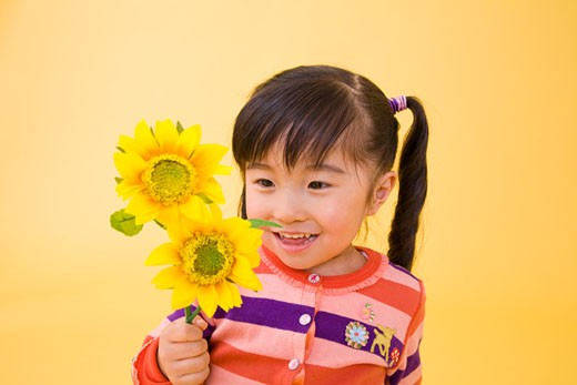 A girl is holding sunflowers. : Stock Photo