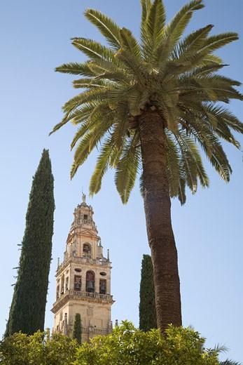 Stock Photo: 1598R-9995100 Spain. Andalusia. Cordoba. Mosque Mezquita.
