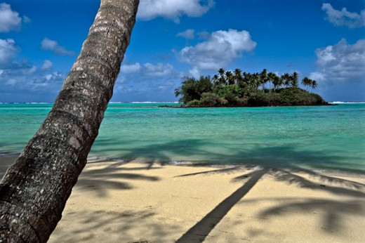 Stock Photo: 1598R-9995601 South Pacific, Cook Islands, Rarotonga, Muri Beach Lagoon, islet and palm tree