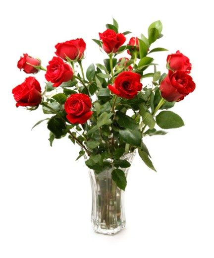 A dozen red roses in a glass vase.  : Stock Photo