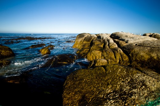 rocky shoreline of Camps Bay, Cape Town, South Africa : Stock Photo