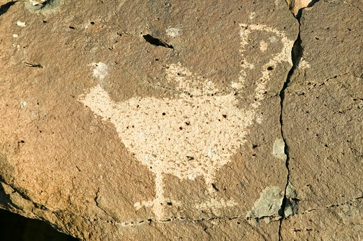 Stock Photo: 1599-13465 Native American petroglyphs featuring an image of a bird at Petroglyph National Monument, outside Albuquerque, New Mexico