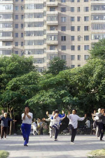 Early morning Tai Chi (taijiquan) exercises in the park in Beijing in Hebei Province, People's Republic of China : Stock Photo