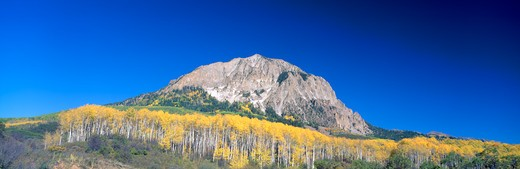 Stock Photo: 1599R-19362 Beckwith Mountain at Kebler Pass in Gunnison National Forest, Colorado