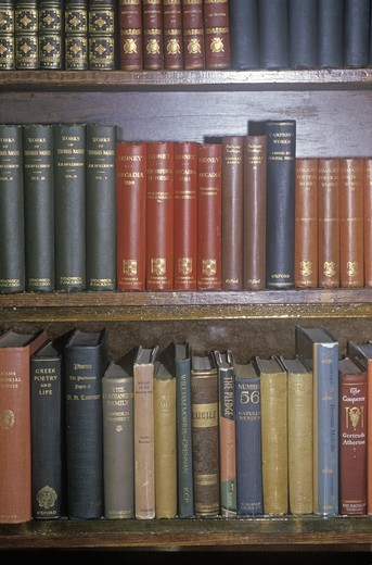 Stock Photo: 1599R-20041 Row of Antique books on shelf