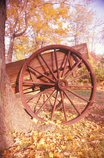 Detail of wagon in autumn at the Historical Henry Wick House, Morristown Park, New Jersey : Stock Photo