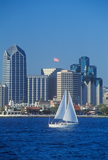 Sailboat sails in view of the San Diego skyline as seen from Coronado, San Diego, California : Stock Photo