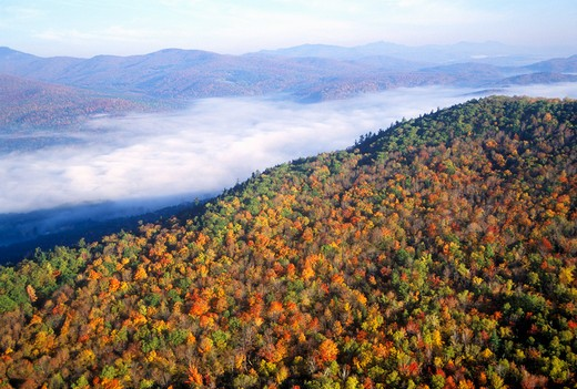 Aerial view of morning fog over mountains near Stowe, VT in autumn along Scenic Route 100 : Stock Photo
