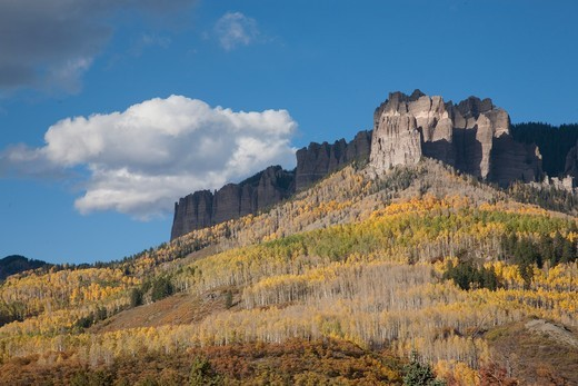 Stock Photo: 1599R-32153 Aspen color near Chimney Peak in the Uncompahgre National Forest, Colorado