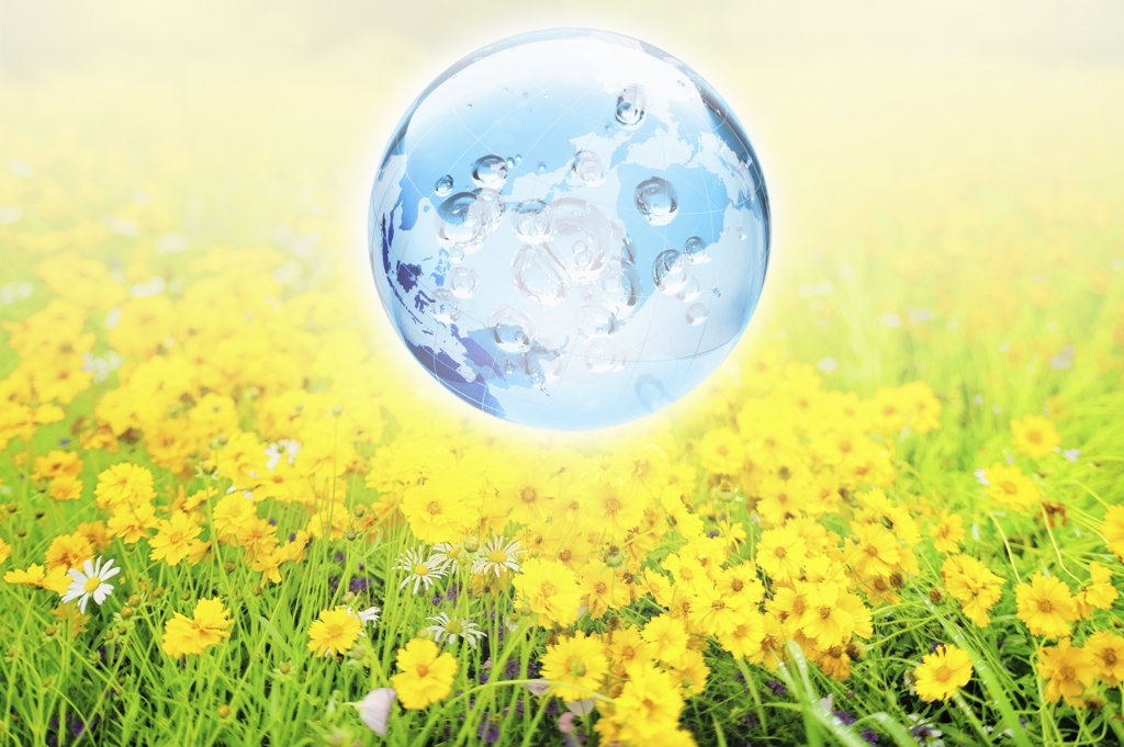 Globe over flowers in meadow, digitally generated image : Stock Photo