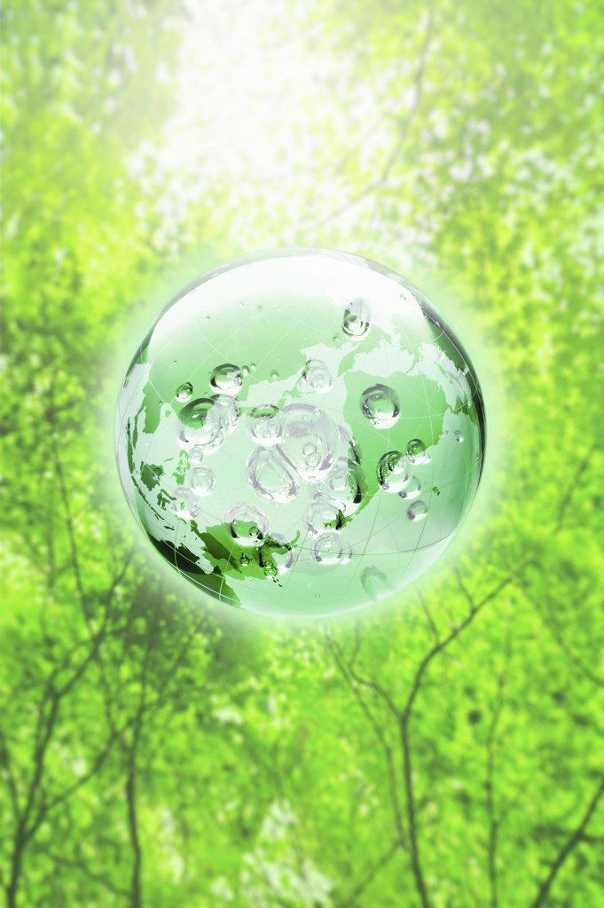 Globe in tree canopy, digitally generated image : Stock Photo