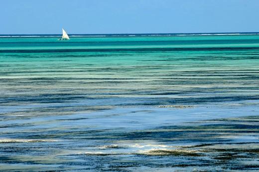 Stock Photo: 1606-103043 Tanzania, Zanzibar island, Jambiani beach, sailing boat
