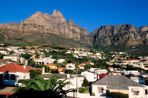 SOUTH AFRICA, CAPE TOWN PENIINSULA, CLIFTON HILLS NEAR CAPE TOWN : Stock Photo