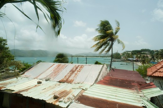 Stock Photo: 1606-104105 French West Indies, Martinique, Sainte Anne, corrugated roof