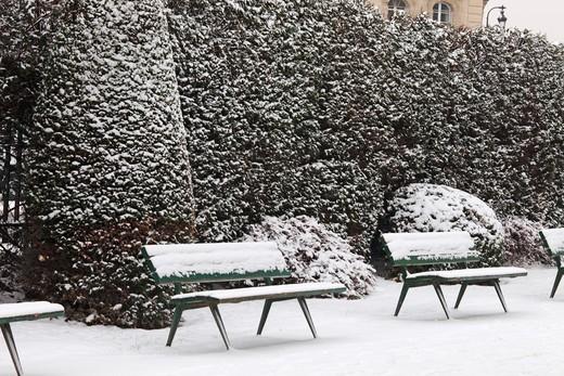 Stock Photo: 1606-104616 France, Paris in winter, Ile de la Cit, Square de l'Ile de France