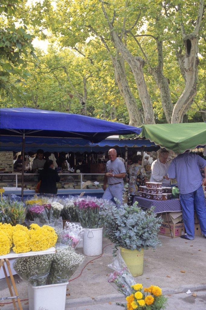 France,  Provence Alpes-Cote-d'azur, Var (83), Saint-Tropez, Lices square, the market : Stock Photo