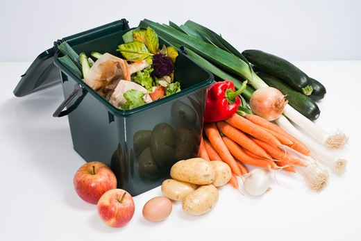 Stock Photo: 1606-108445 Compost container and vegetables