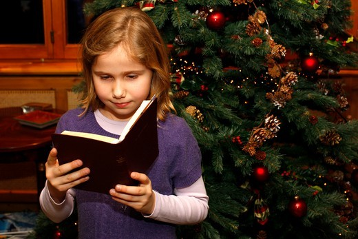 Suisse, Valais, Crans-sur-Sierre, Child reading the Bible on Christmas day : Stock Photo