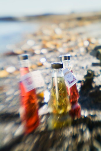 Stock Photo: 1606-112617 Canada, Gasp?sie, oil bottles