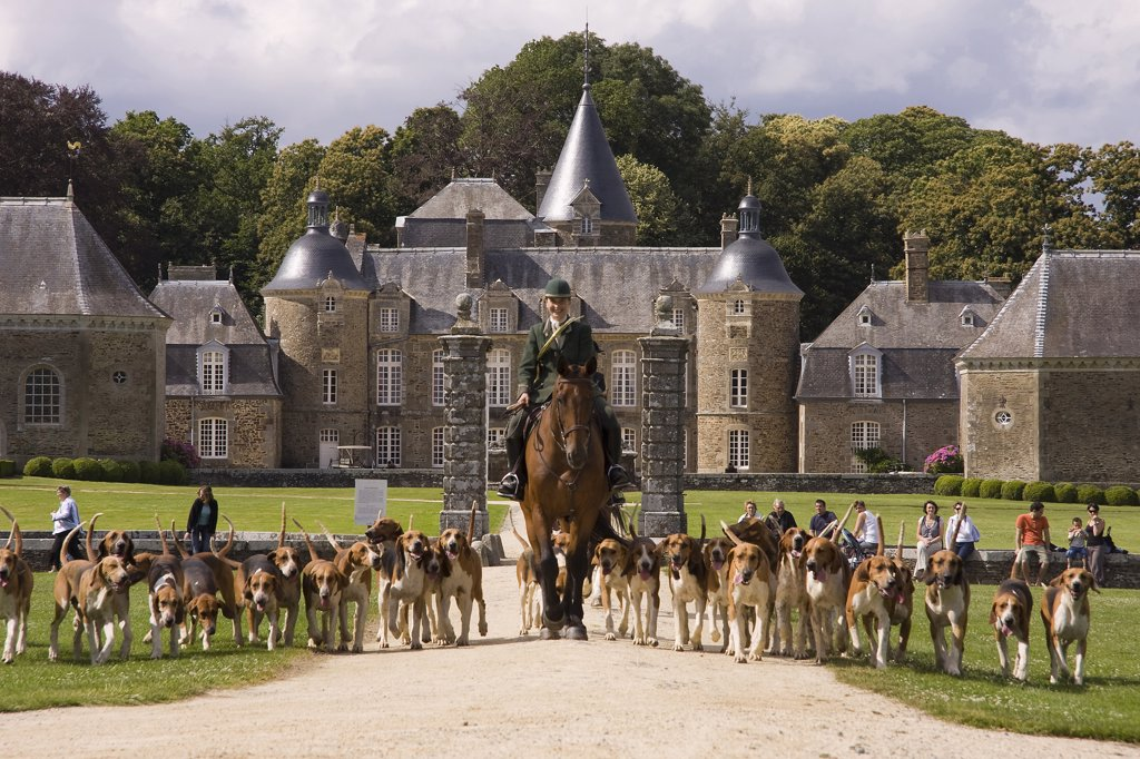 Stock Photo: 1606-115606 France, Brittany, Pleugueneuc zoo, pack of hounds
